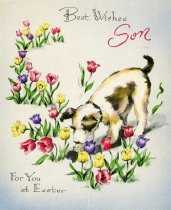 Image of Best Wishes Son [greeting card] -