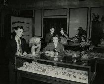 Image of Kentucky Museum Exhibits - Unknown
