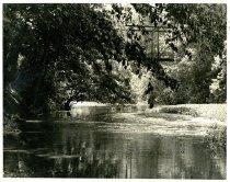 Image of A Summer Scene - Graham, Nelson