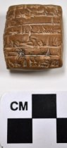 Image of 2001.5.3 - Cuneiform tablet