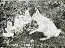 Image of Rabbits At Dinner In The Woods -