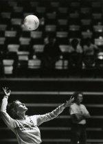 Image of WKU Volleyball - Musacchio, Rick
