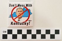 Image of 2004.2.1 - Anti-George W. Bush political button