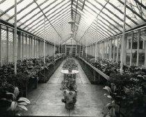 Image of Deemer's Floral Flower Shop -