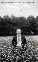 Image of Dr. C. M. Thompson Buck Wheat Field -