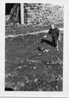 Image of Rosanna Warren playing with cat in yard