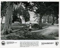 Image of Yorktown Battlefield National Park -