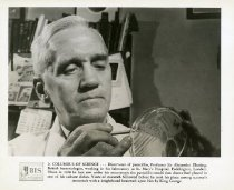 Image of Penicillin in World War 2 -