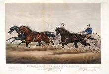 Image of Ethan Allen and Mate and Dexter