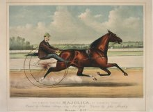 "Image of Famous Trotter Majolica, by Bonner's ""Startle"", The"
