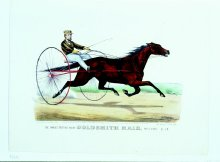 Image of Famous Trotting Mare Goldsmith Maid