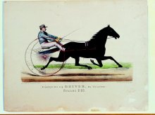 Image of Lenore B. and Sidney A. Alpert Currier & Ives Collection - A. Goldsmith's B.G. Driver by Volunteer