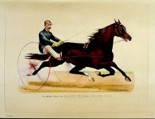 Image of Grand Stallion Maxy Cobb, by Happy Medium, The