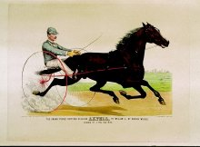 "Image of Grand Young Trotting Stallion ""Axtell"" by William L., by George Wilkes, The"