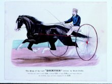 "Image of King of the Turf ""Dexter"" Driven by Budd Doble, The"