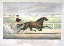 Image of Mr. Bonner's Horse Joe Elliott driven by J. Bowen