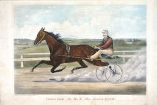 Image of Trotting Queen Alix, Record 2:03 3/4
