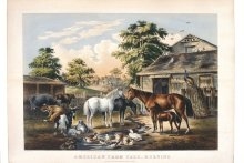 Image of American Farmyard-Morning