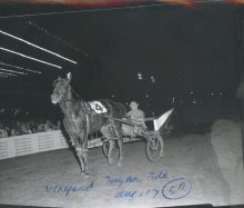 Image of Lew Barasch Roosevelt Raceway Collection - Portrait on Track