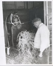 Image of Lew Barasch Roosevelt Raceway Collection - Candid/Portrait