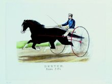 """Image of Lenore B. and Sidney A. Alpert Currier & Ives Collection - """"Dexter"""" By Rysdyk's Hambletonian"""
