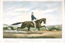 "Image of Celebrated Horse ""Dexter - ""The King of the Turf"""