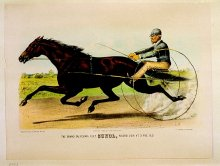 Image of Grand California Filly, Sunol, record 2:10 1/2 at 3 yes. old, The