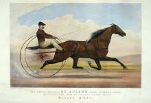 Image of Grand Trotting Stallion St. Julien driven by Orrin A. Hickok, The