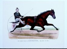 Image of Great Pacer Johnston, driven by P.V. Johnston, Record 2:10, The