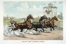 Image of Pacing For A Grand Purse
