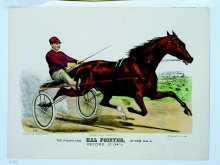 Image of Pacing King, Hal Pointer, by Brown Hal, The