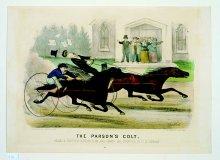 Image of Parson's Colt, The