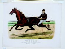 Image of Lenore B. and Sidney A. Alpert Currier & Ives Collection - Piedmont