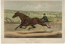 "Image of Queen of the Turf ""Maud S."" Driven by W.W. Bair, The"