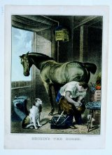 Image of Shoeing the Horse