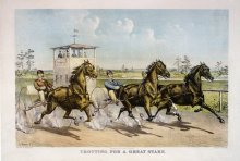 Image of Trotting for a Great Stake