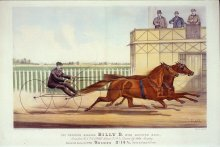 Image of Trotting Gelding Billy D with Running Mate, The