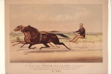 Image of Trotting Gelding Frank with J.O. Nay his Running Mate, The