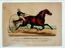 "Image of Trotting Mare ""American Girl"" driven by M. Rodin"