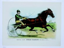Image of Trotting Mare Belle Hamlin