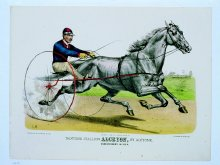Image of Trotting Stallion Alcryon, by Alcyone
