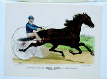 Image of Trotting Stallion Palo Alto, by Electioneer