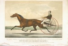 Image of World Renowned Trotting Mare Goldsmith Maid, The