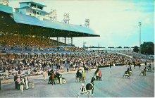Image of Jim Brooks Collection of Harness Racing Americana