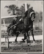 Image of General Photograph Collection - On Track