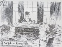 Image of White Water - Schopf, Oliver, 1960-