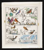Image of [Magazine cover featuring a variety of birds] - Caplan, Irwin, 1919-2007