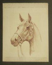 Image of [Horse] - Gordon, Al, fl.1950s
