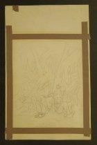 Image of [Jungle drawings] - Rupe, John