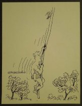 Image of [Woodpecker pecks Tarzan's rope] - Esquivel, Arcadio, 1959-